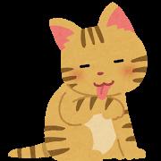 pet_cat_kedukuroi.png