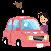 bird_tori_fun_car.png